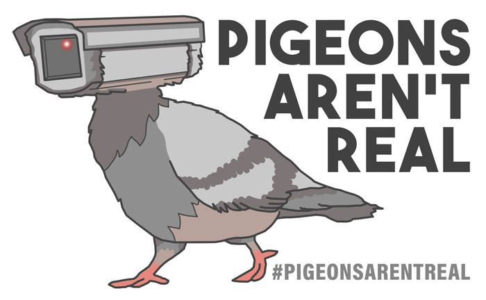 pigeons aren't real brand