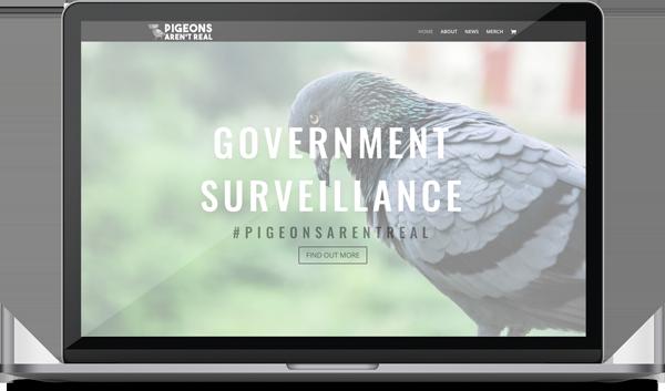 pigeons arent real web design
